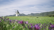 Windmill In Andalusia Spain