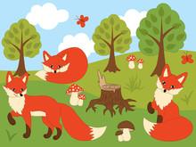 Vector Cartoon Foxes