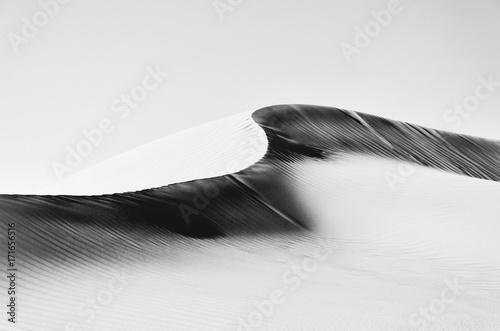streszczenie-grzbiet-wydmowy-czarno-bialy-high-key-rub