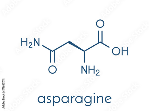 Photo Asparagine (L-asparagine, Asn, N) amino acid molecule