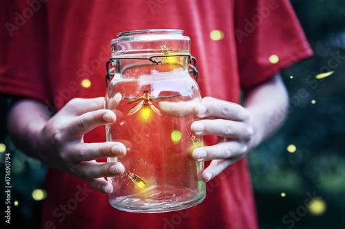 Fotografering  Fireflies in a jar