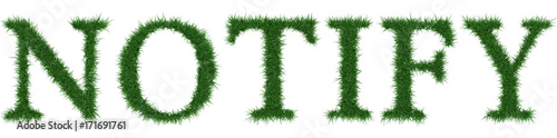 Fotografía  Notify - 3D rendering fresh Grass letters isolated on whhite background