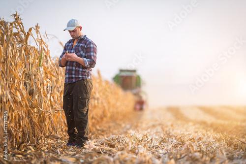 Fotografía  Young farmer examine corn seed in corn fields
