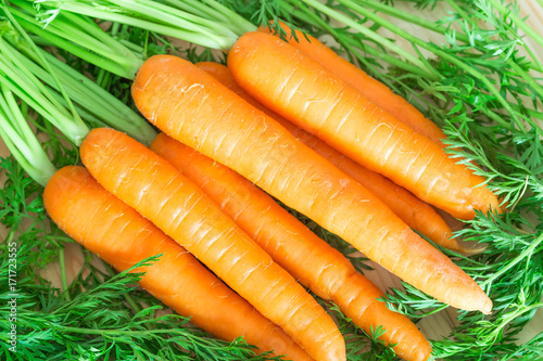 Fresh and sweet carrots on wooden table.