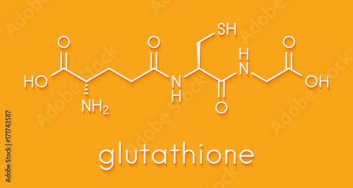 Glutathione (reduced glutathione, GSH) endogenous antioxidant molecule Canvas Print