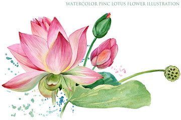 Obraz pink lotus border. watercolor botanical illustration.