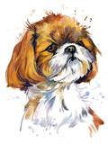 Fototapeta Dogs - cute dog. Funny puppy watercolor illustration