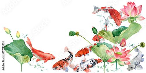 Watercolor Koi Carp And Lotus Flower Illustration Buy This Stock