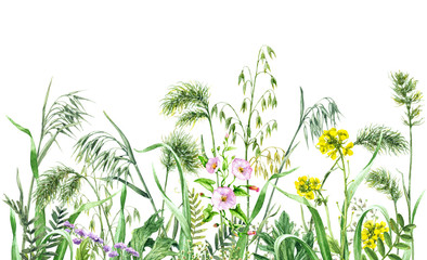 Naklejka Watercolor wild flowers border