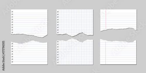 Obraz Set of Vector Illustrations of torn pages of notebook paper lined and square - fototapety do salonu