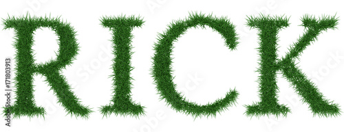 Rick - 3D rendering fresh Grass letters isolated on whhite background Fototapet