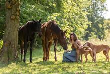 Hübsches Mädchen Mit Pferd U...