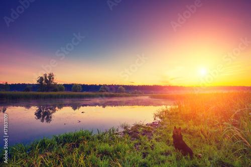 Fototapeta Wcześnie rano, wschód słońca nad jeziorem. Mglisty poranek, wiejski krajobraz, pustynia, mistyczne uczucie