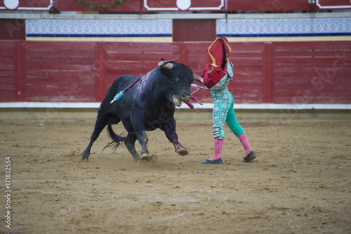 Corrida Bullfighter in a bullring.