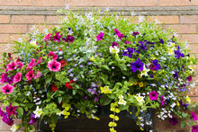 Large Wall Basket With Variety...
