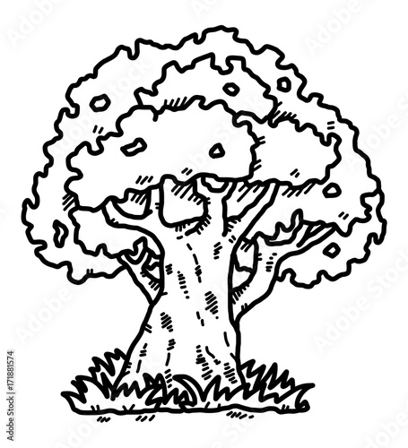 Big Tree Cartoon Vector And Illustration Black And White Hand