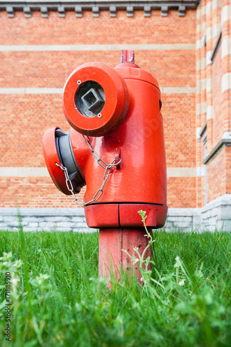 Papiers peints Jardin hydrant in the grass