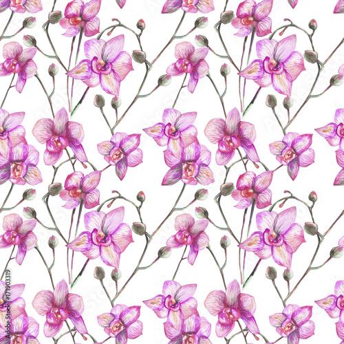 Fotografie, Obraz  beautiful original red blooming orchids. watercolor art