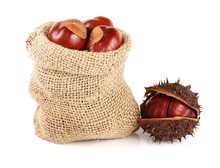 Chestnut In A Bag Isolated On ...