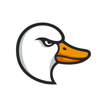 Goose Head Illustration