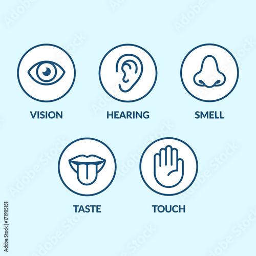 Foto  Senses icon set
