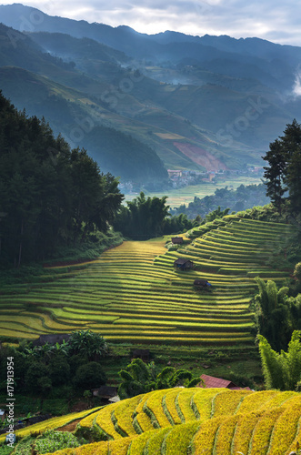 Deurstickers Rijstvelden Top view of Rice terraced fields on Mu Cang Chai District, YenBai province, Northwest Vietnam