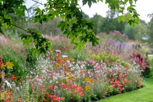 Cadres-photo bureau Jardin Spätsommer im ammerland