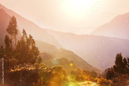 Valokuva  Colca canyon