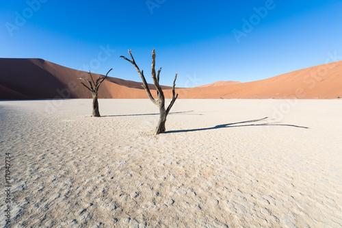 Fotografie, Obraz  Namibias Wüste
