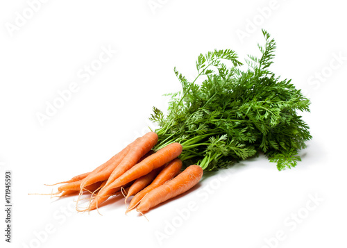 Bunch  of new carrots isolated on white