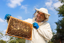 Beekeeper With Honeycomb In Th...