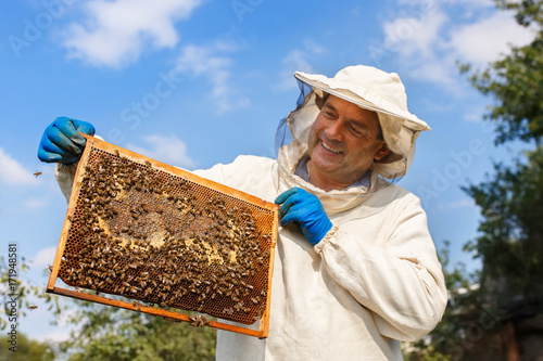 beekeeper with honeycomb in the apiary Wallpaper Mural