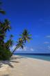 Beach of tropical island
