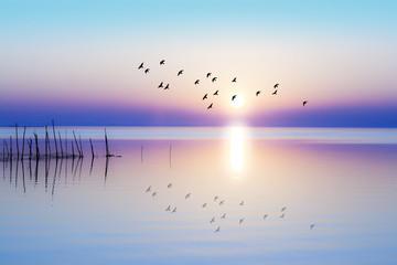 Obraz na Plexiamanecer sobre el mar en calma
