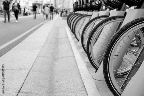 rzad-rowerow-na-ulicy