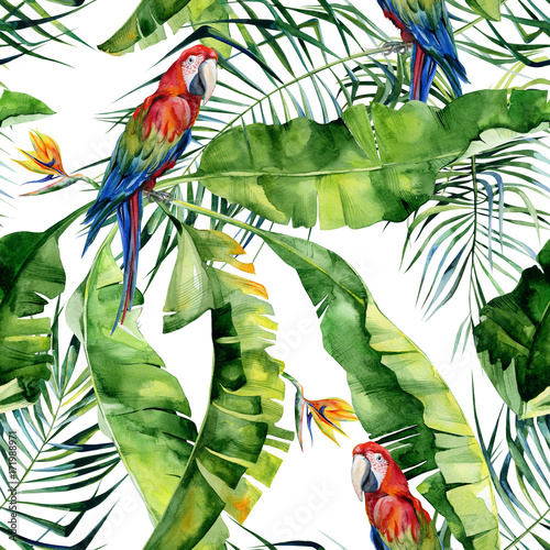 bezszwowa-akwareli-ilustracja-tropikalni-liscie-zwarta-dzungla-szkarlatna-ary-papuga-strelitzia-reginae-kwiat-malowane