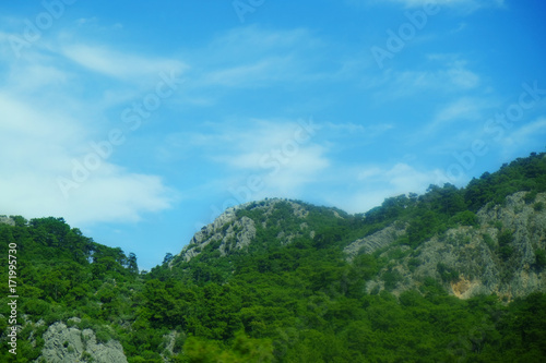 Foto op Aluminium Blauw Picturesque landscape with mountain forest