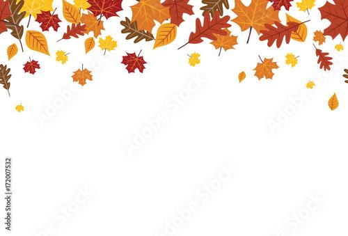 Obraz Seamless Bright Fall Autumn Leaves Border 1 - fototapety do salonu
