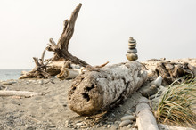 A Cairn On Some Beach Driftwood