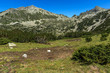 Amazing Landscape with Polezhan and Dzhangal peaks, Pirin Mountain, Bulgaria