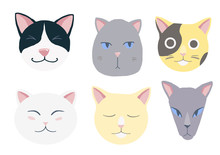Nice Cats Vector Set