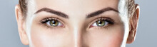 Closeup Shot Of Woman Eye With Day Makeup. Long Eyelashes