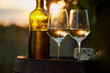 Two glasses of white wine and bottle with food at sunset