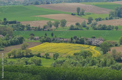 Papiers peints Olive Lectoure, parcelle jaune du paysage, Occitanie, Gers, France