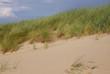 Düne mit Dünengras im Wind