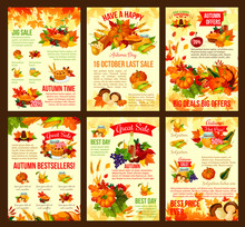 Thanksgiving Autumn Vector Dis...