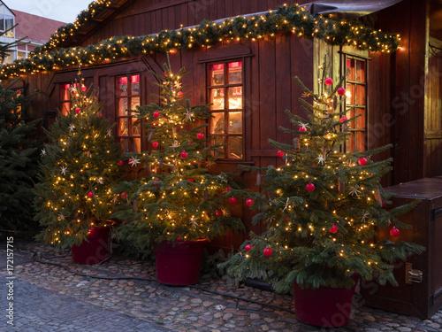 Fotografie, Obraz  Weihnachtsbäume vor einer Holzhütte, Weihnachtsmarkt, Deutschland, Europa