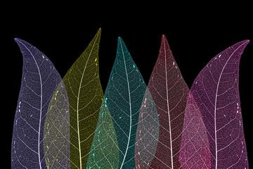 Obraz na Szkle Liście Dry leaf detail texture