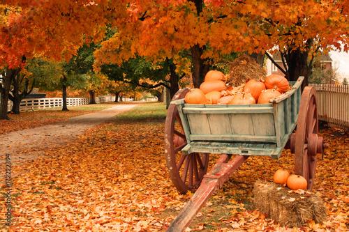 Foto op Canvas Herfst Fall Colors & Pumpkins in a Cart