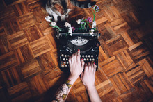 Writting Machine With Flowers And A Cat